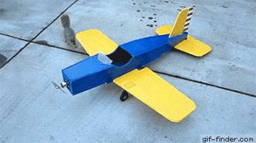 비행기 도둑