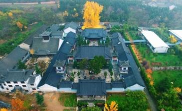 중국에 있는 1400년된 은행나무