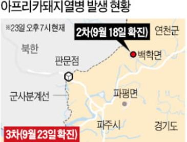 김포 돼지열병 확진 ㅜㅜ