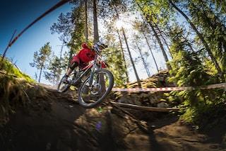 2020 자전거 계급도 : 산악자전거(MTB) 편