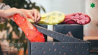 과즙미 좔좔 아디다스의 축구화를 소개합니다!! (Adidas Locality Pack review)