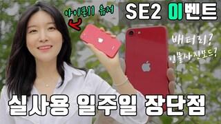 아이폰SE2 메인폰 등극? 아이폰11 유저가 말하는 아이폰SE2 장단점