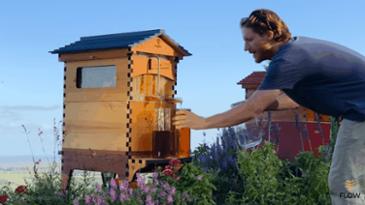 세입자 꿀 빨아먹는 건물주