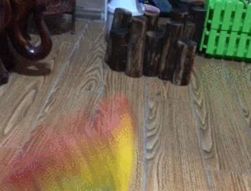 생각보다 빠른 거북이