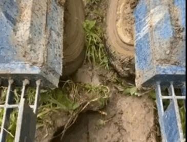대나무 심는 기계