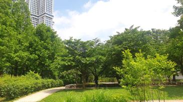 서울숲 풍경