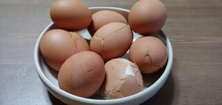 구운 계란 8개