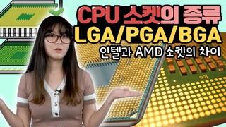 CPU 소켓의 종류 / LGA, PGA, BGA가 대체 뭐야? [브로리퀘스트]