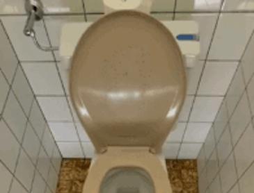 이런 화장실이 있는 곳에 살고 싶습니다.