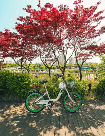 따릉따릉, 두 바퀴로 달리는 서울