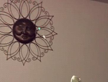 비누방울 잡기