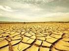 119. 기후 변화  성장이냐 생존이냐