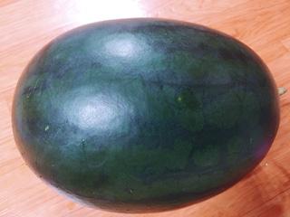 15kg 흑미수박 잘랐습니다^^