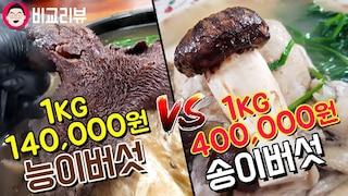 최고 비싼 버섯 끝판왕전.돈값할까? 송이버섯vs능이버섯