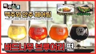 [리뷰] 버드나무 브루어리 , 강릉 수제맥주 소개 (Gangneungsi Budnamu Brewery Introduction)