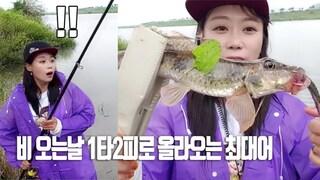 밀양 비오는날 매운탕끝판왕이ㄷㄷ  fishing aing2 [여자 낚시꾼 아잉2]