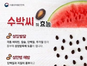 [정보] 수박씨의 효능.jpg