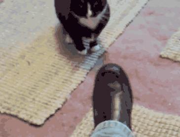 어디서 발을~