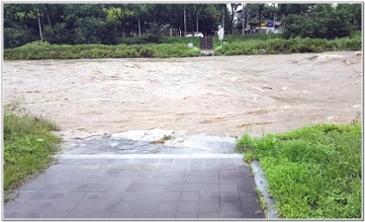 어제 비가 너무 많이 내렸네요.