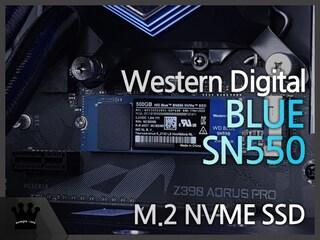 WD BLUE SN550 사용기