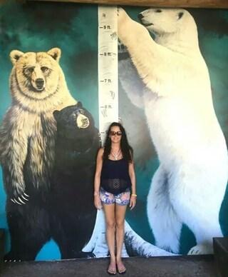 곰 실제 크기 체감