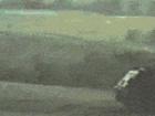탱크 화염방사기의 위력