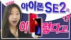 [ iPhoneSE2 ] 아이폰SE의 부활? 아이폰8? (예상 정보 총정리) // 아이폰11 안사고 내년을 기다리시는 분들 얼른 보세요!!