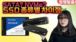 SSD 종류별 차이점! SATA? NVMe? SSD 종류를 잘 알아보고 구매하자[브로리퀘스트]