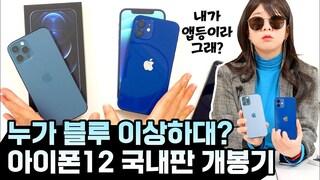 아이폰12, 12 Pro 국내판 입수! 차이점 비교 총정리! (애플에서 빌려옴)