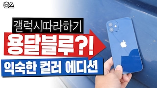 갤럭시 따라하기? 용달블루 익숙한 컬러 에디션, 아이폰 12 블루 실물