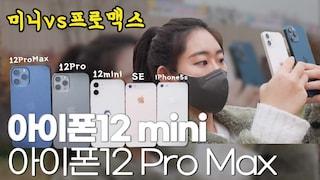 아이폰12미니 ㅣ 아이폰12프로맥스 실물 크기 비교, 일주일 사용기 리뷰!