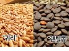 20년 국내산 잡곡 2kg(선택) + 증정 = 8,500원[무배]