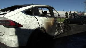 [칼럼] 급증하는 전기차 사고, 운전자가 갖춰야 할 상식도 있다