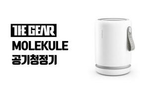 [The Gear 리뷰] 몰리큘 공기청정기