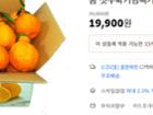 고당도 노지 한라봉 5KG 혼합과 전상품 첫수확기념특가