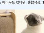 (쿠팡) 고양이 수직형 스크래쳐 42% 할인중이네여 집사들 공유