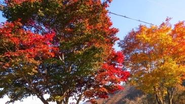 영남 알프스 아름다운 가을