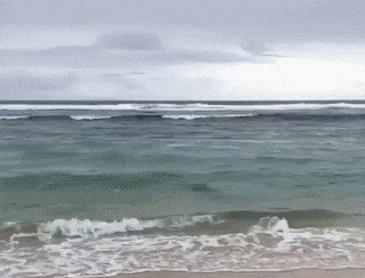 해변 갑분싸