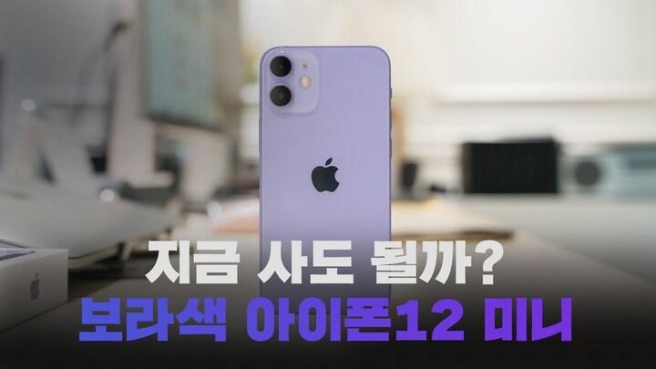 보라색 아이폰12 미니 퍼플 꼼꼼하게 둘러보기! 지금 사도 좋을 5가지 이유