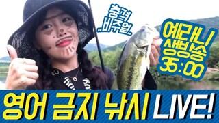 영어 금지 낚시LIVE  배스. 낚시. 배스낚시. 루어. 루어낚시. bass. fishing. lurefishing