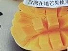 대만의 명물과자 펑리수 로얄 패밀리 '망고 케잌'