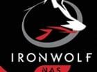 Seagate IronWolf 7200/256M(ST6000VN0033, 6TB) (249,000/무료배송)