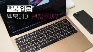 맥북에어 2019 구입해도 될까요? (내 솔직한 생각 MacBook Air)