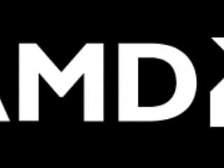AMD, 라데온 그래픽 내장한 데스크탑용 CPU '라이젠 5000 G-시리즈' 출시