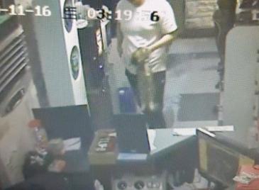 피시방서 고양이 죽여 건물 밖 던진 알바생…CCTV에 덜미
