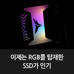 RGB 포스가 다른 SATA SSD, T-Force DELTA RGB SSD 250GB
