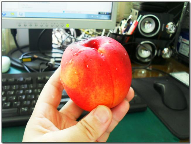 35 잘익은 과일.jpg