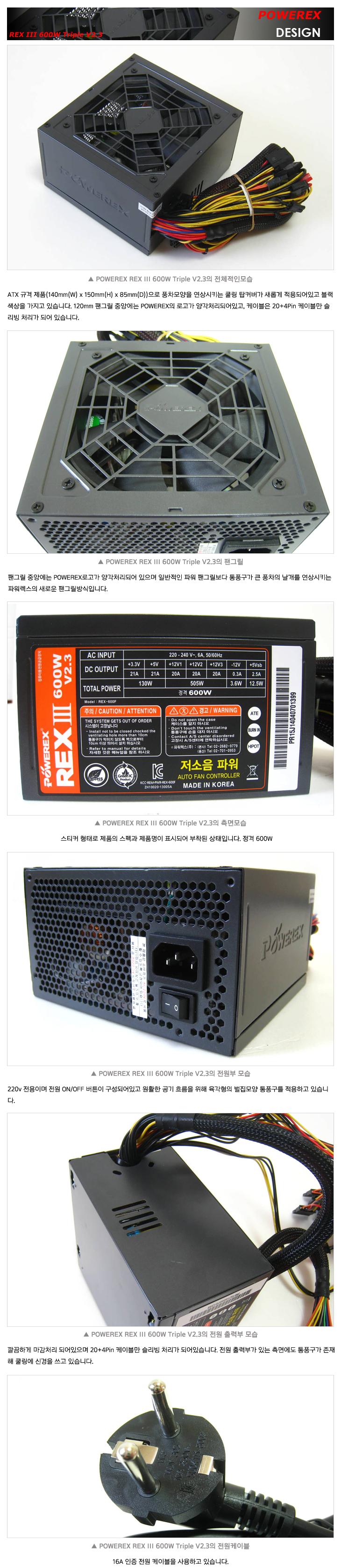 rex3_03.jpg