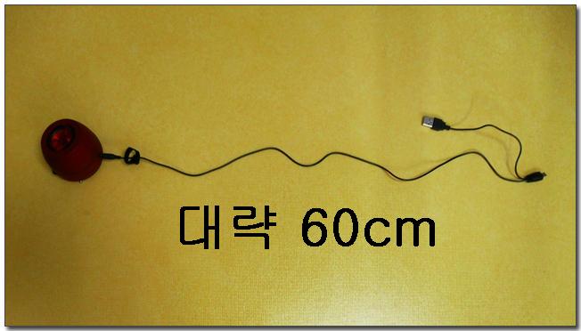 31-1 길이 측정.jpg