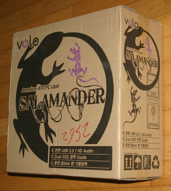 salamander005.jpg